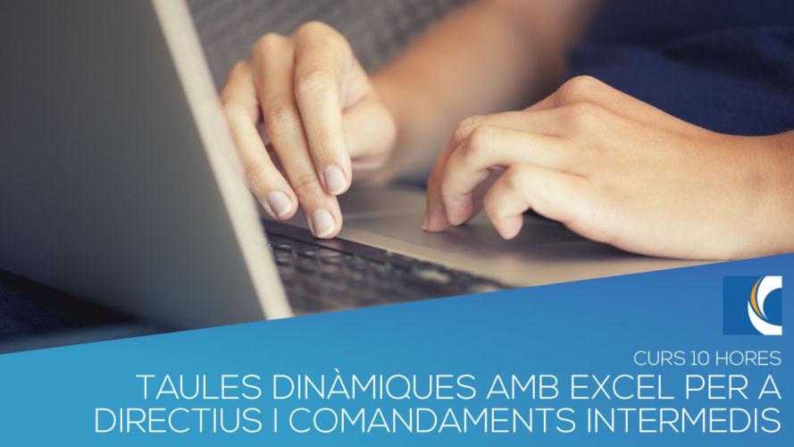 TAULES DINÀMIQUES AMB EXCEL PER A DIRECTIUS I COMANDAMENTS INTERMEDIS